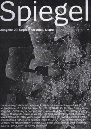 ztscript  29 : Spiegel - cover image
