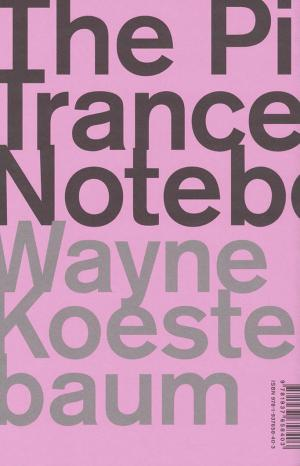 The Pink Trance Notebooks - cover image