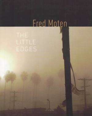 The Little Edges - cover image