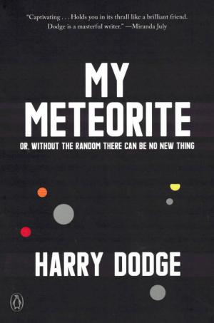 My Meteorite: Or, Without the Random There Can Be No New Thing - cover image