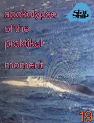 Apokolypse of the praktikal moment - cover image