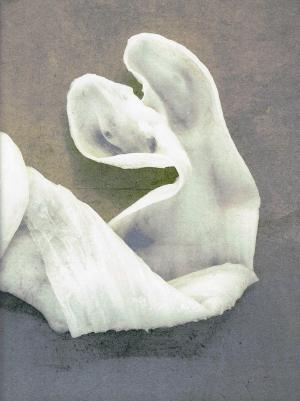Wet With Dew - cover image